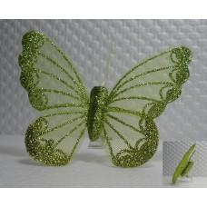 Motýlek na sponce zelený